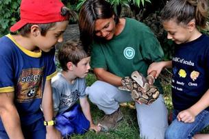 recensione bioparco roma, chi ha paura dei serpenti? Foto Archivio Bioparco M. Di Giovanni