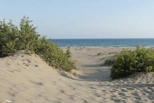 Archivio-Toscana-Promozione-Maremma-spiaggia