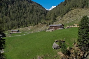 Austria-Tirolo-Orientale-TVB Osttirol-Almzauber
