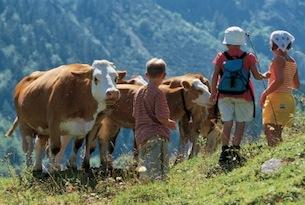 Austria-vacanze-saisburghese-krimml