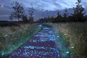 Olanda in bici con bambini-Pista-ciclabile-luminosa-dedicata-a-Van-Gogh