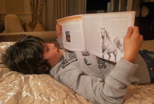 Cavallino-Bianco-libro-fiabe