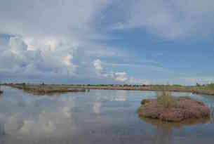 Cavallino-Treporti-laguna4