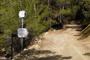 Cipro-Turismo-Alfonso-Lorenzetto-Cedar-Valley