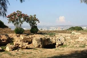 Cipro-pafos-parco-archeologico2