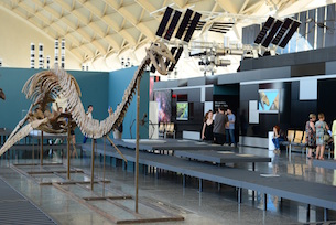 Elsnostresdinosaures_expo_museo-2
