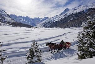ENGADIN St. Moritz: Pferdeschlittenfahrt im Val Roseg