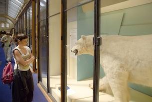 London-Natural History Museum