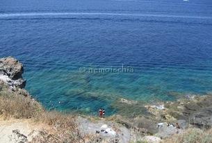 Nemo-ischia-zaro