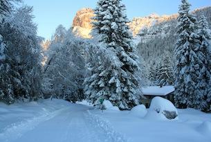 Passeggiate sulla neve in Trentino