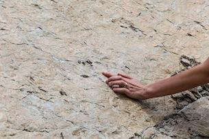 Piemonte-Valle-Maira-Resti-fossili-Fotografie-Devid-Rotasperti 1