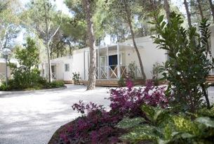 Sira-Resort2