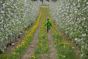Trentino-Comano-Terme-fattoria-didattica-agrilife2