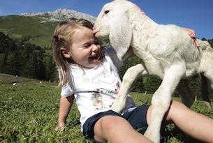 Fiemme estate per bambini, attività con gli animali