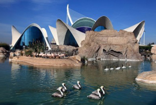 Valencia_bambini_oceanografico