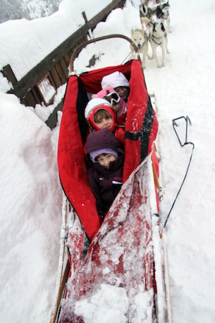 Valtellina-Arnoga-sleddog1