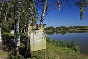 austria-burgenland-parco-Weinidylle3