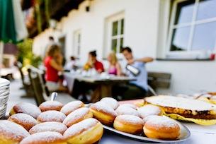 austria-carinzia-vacanze-in-fattoria-agriturismocarinzia.com-Ikarus