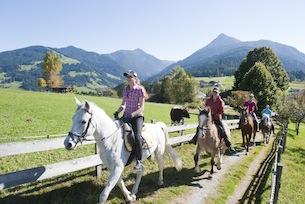 austria-carinzia-vacanze-in-fattoria-agriturismocarinzia.com-equitazione