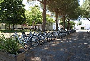 basilicata-mare-pisticci-masseria-bici