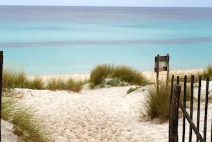 corsica-spiagge-saleccia2