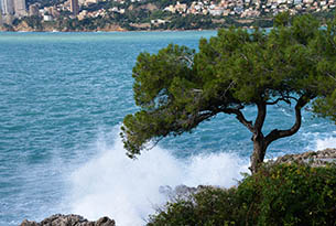 costa-azzurra-roquebrune cap martin - promenade le corbusier (149)_b