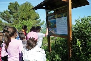 educazione-ambientale-Regione-Marche