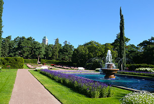 finlandia-kultaranta-garden -photo-devid-rotasperti-photographer (4)