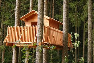 foresta-nera-lossburg-famiglie-casa-albero