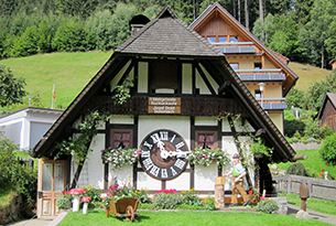 foresta-nera-lossburg-famiglie-cucu2img_0491
