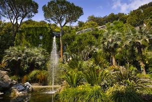 giardini-forio-ischia