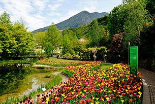 Giardini Merano per bambini, giardino dei gigli