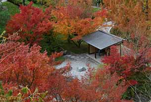 Giardini Merano per bambini, fioriture in autunno