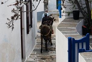 grecia-sifnos-tradizioni-asinello