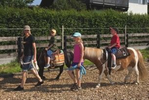 innsbruck-Pony-Mutters