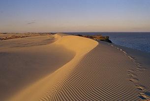 lituania-neringa-dune
