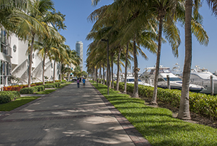 miami-beach-marina-and-sidewalk-day-ls