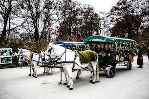 monaco-di-baviera-mercatini-di-Natale-giardini-inglesi-foto-familygo-devid-rotasperti2