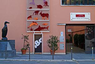 Museo di zoologia Roma bambini, ingresso