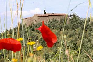 museo-leonardo-vinci-casa natale_anchiano