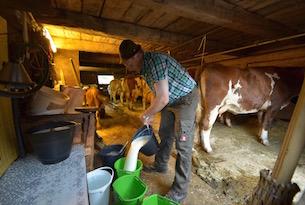 osttirol-alti-tauri-contadino-latte-1