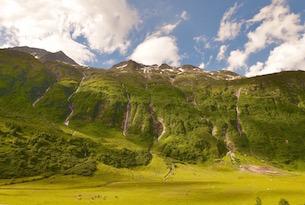 osttirol-alti-tauri-panorama- valle-con-mucche
