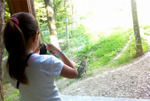 paganella-blogtour_wolf