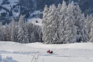 svizzera-lenzerheide-vacanzeneve-familygo (1)