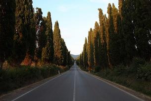 toscana-costa-degli-etruschi-per-bambini-archivio-fot-provincia-livorno-Rebuffo Sara-viale-cipressi