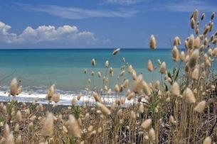 toscana-costa-degli-etruschi-per-bambini-vela-archivio-fot-provincia-livorno-Becorpi-Fabio
