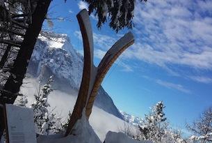 Passeggiate sulla neve in trentino-alpe-cimbra-Il-respiro-degli-alberi