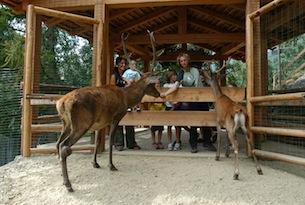 trentino-famiglia Val di Sole casa dei cervi-Parco Stelvio