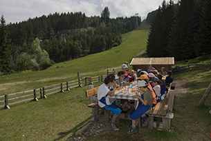 trentino-fiemme-Alpe Cermis-boscaiolo