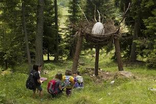 trentino-sentieri-tematici-visitfiemme-foto Alberto Campanile-Foresta dei Draghi